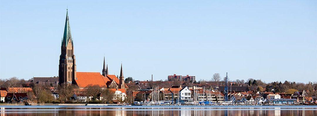 Freie Wähler Schleswig
